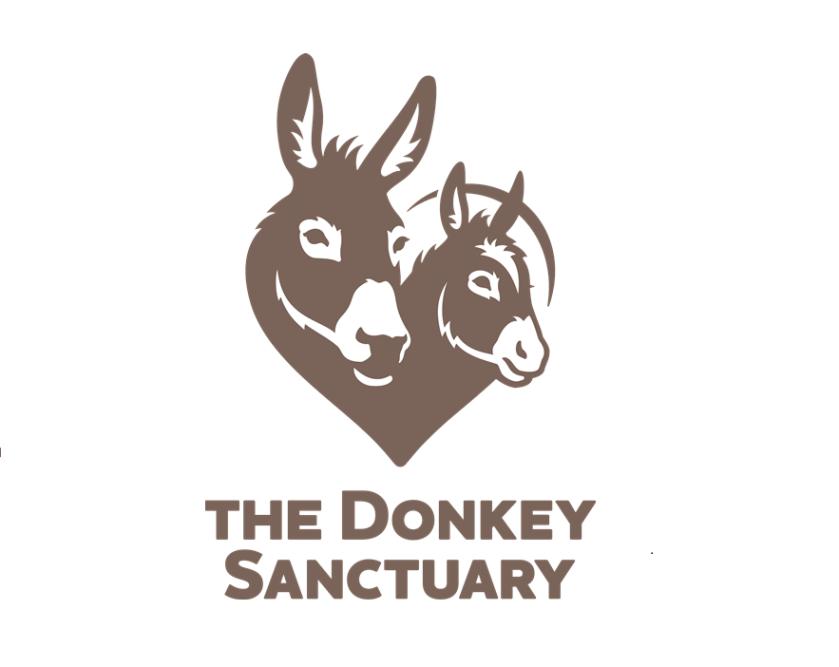 the_donkey_sanctuary_small_3