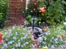 Fulwood Open Gardens Picture: C Kelly